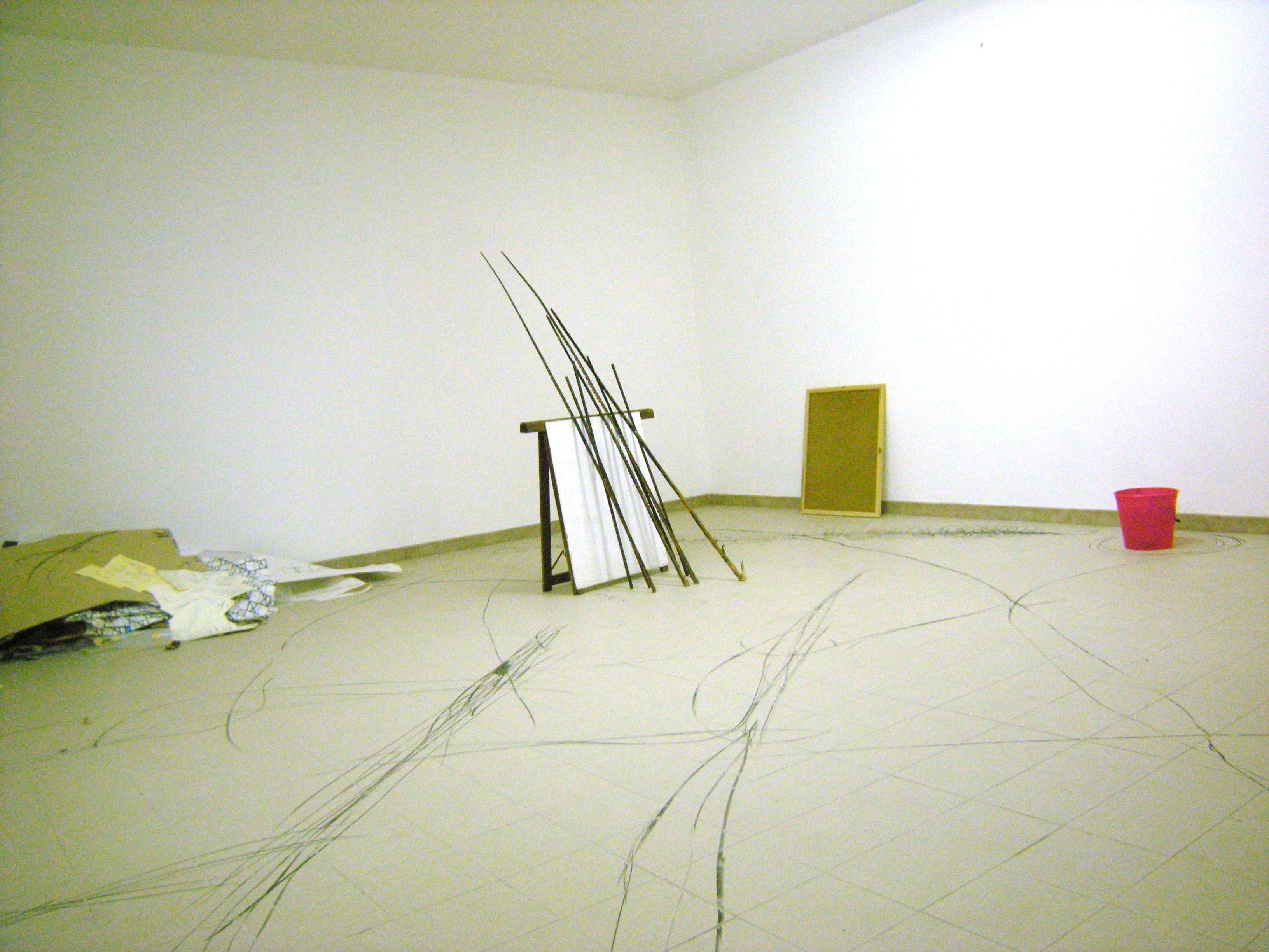 Dicrocoelium Dendriticum, installation view MACC, Calasetta. 2010